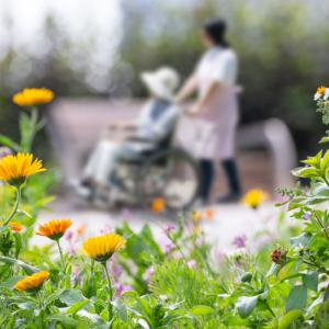 person in a wheelchair being pushed by another person around a garden