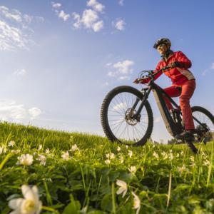 person on a bike in field of flowers saints way